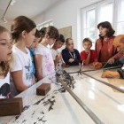 26-Muzej rudnika Mežica