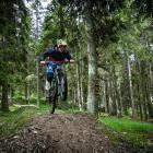 6-Bike Park Rogla