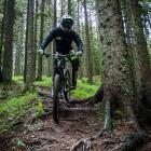 9-Bike Park Rogla
