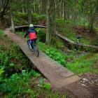 11-Bike Park Rogla