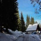 5-Počitniška koča Planinka, Pokljuka