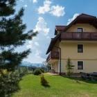 5-Apartmaji Vila Planina, Kranjska Gora