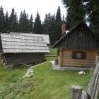 4-Pastirska koča Jelje, Pokljuka